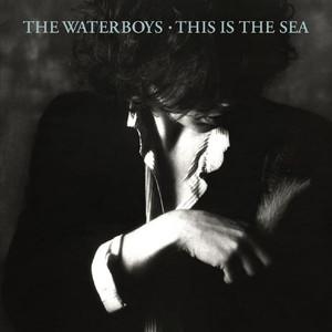 This Is the Sea album