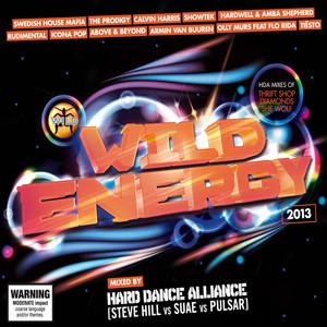 Wild Energy 2013