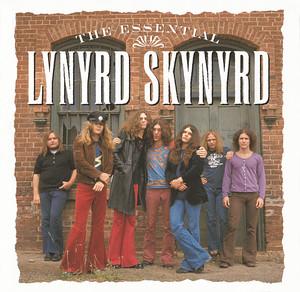 Pochette Lynyrd Skynyrd