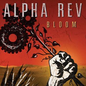 Bloom album