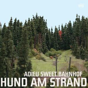 Adieu Sweet Bahnhof - Hund Am Strand