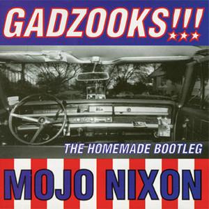 Gadzooks!!! The Homemade Bootleg album