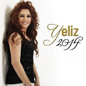 Yeliz 2014 Albümü