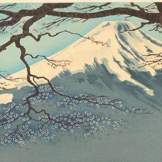 Mt. Fujitive Artist | Chillhop