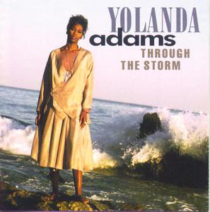Through the Storm album