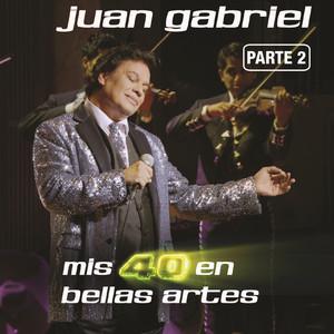 Mis 40 En Bellas Artes (En Vivo Desde Bellas Artes, México/ 2013/ Parte 2) Albumcover