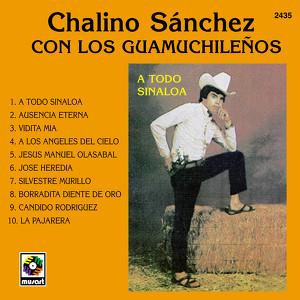 A Todo Sinaloa Albumcover