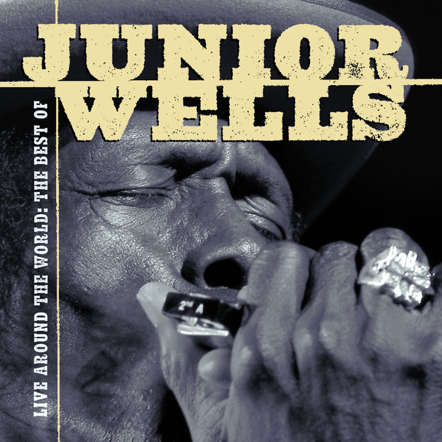 Live Around The World: The Best Of Junior Wells