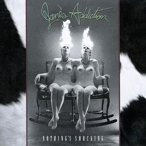 Nothing's Shocking Albumcover