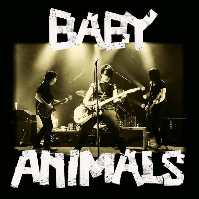 Baby Animals Live