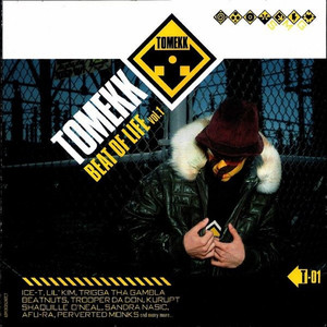 DJ Tomekk  Lil' Kim, Trooper Da Don Kimnotyze cover
