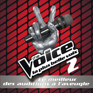The Voice 2 : Le Meilleur Des Auditions A L'Aveugle