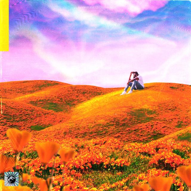 Album cover for California Poppy by Rexx Life Raj