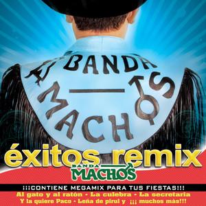 Exitos Remix album