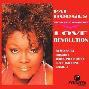 Love Revolution: The Remixes