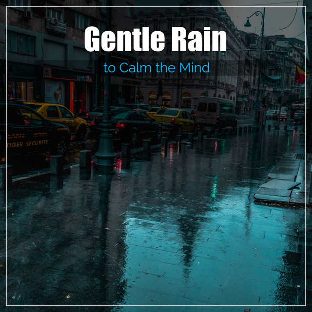 Rain in the Back Garden, a song by Rain Sounds & Nature