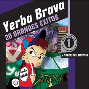 20 Grandes Exitos - Yerba Brava