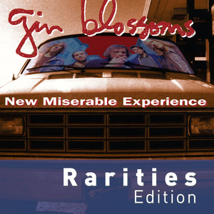 New Miserable Experience album