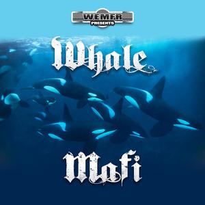 Whale Mafi Albümü