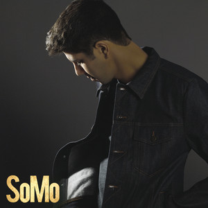 SoMo Red Lighter cover