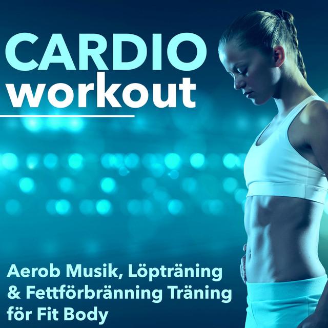 body fitness träningsprogram