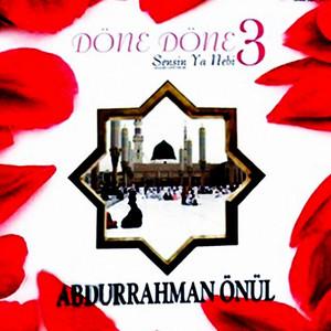 Döne Döne 3 Albümü