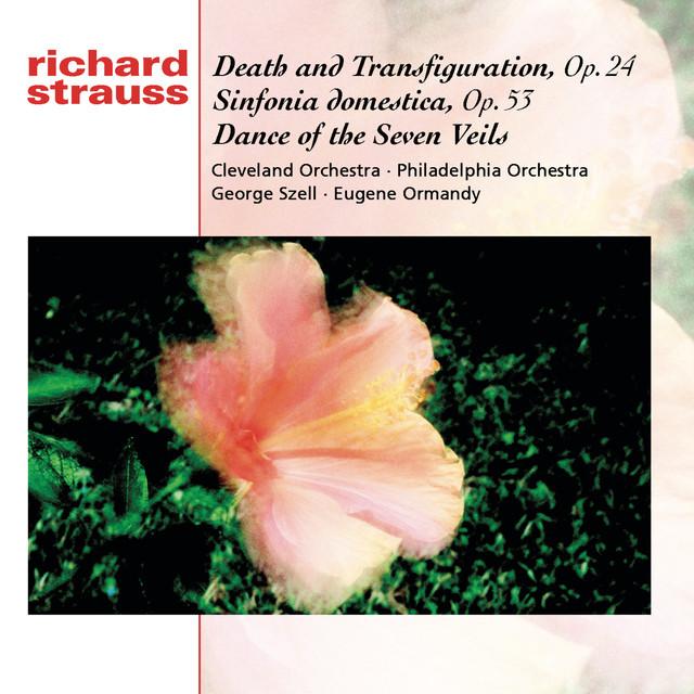 Strauss: Tod und Verklärung; Sinfonia Domestica; Dance of the Seven Veils Albumcover