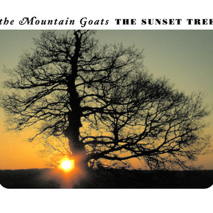 The Sunset Tree - Mountain Goats
