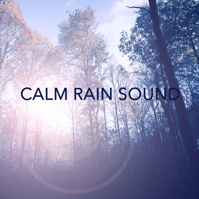 Calm Rain Sound by Nature Sounds on Spotify