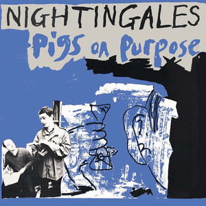 Picture of The Nightingales