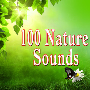 100 Nature Sounds Albumcover