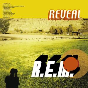 R.E.M. Imitation of Life cover
