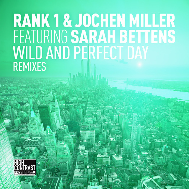 Wild and Perfect Day (The Remixes)