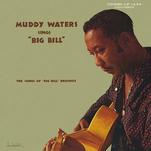 Muddy Waters Sings Big Bill Broonzy Albumcover