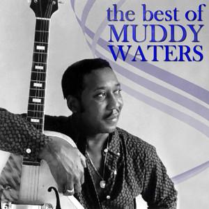 The Best of Muddy Waters album