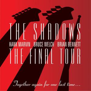 THE FINAL TOUR album