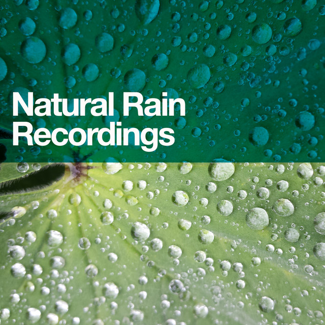 Natural Rain Recordings Albumcover