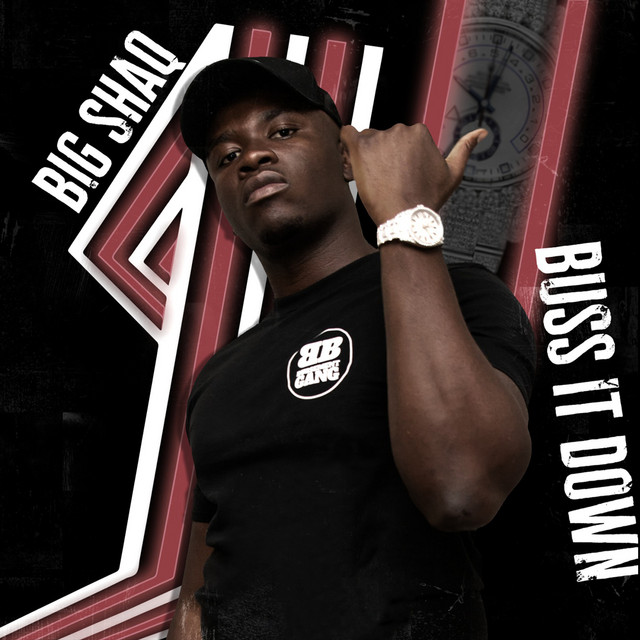 Albome cover of Buss It Down