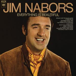 Everything Is Beautiful album