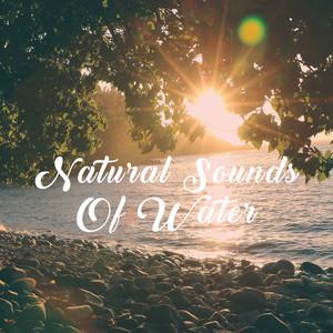 Natural Sounds Of Water Albümü