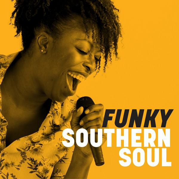 Various Artists Funky Southern Soul album cover