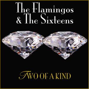 The Flamingos, Sixteens Dream of a Lifetime cover