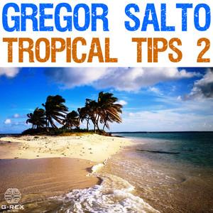 Gregor Salto - Tropical Tips 2 Albümü