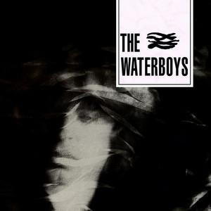 The Waterboys album