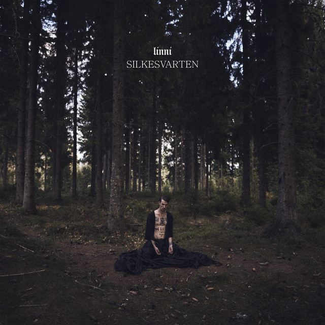 Album cover for Silkesvarten by Linni