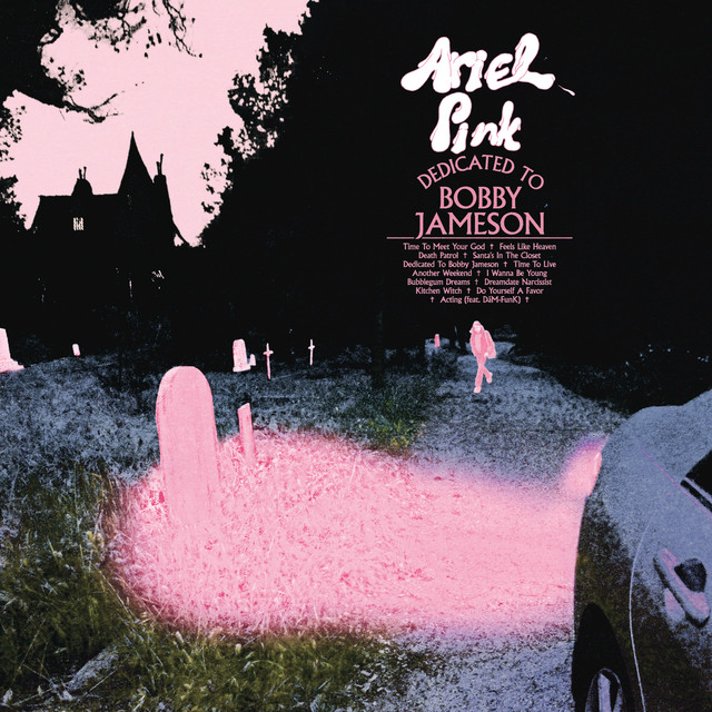 Album cover for Dedicated To Bobby Jameson by Ariel Pink
