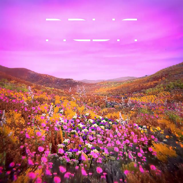 Album cover for NOVA Pure by RL Grime