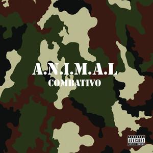 Combativo album