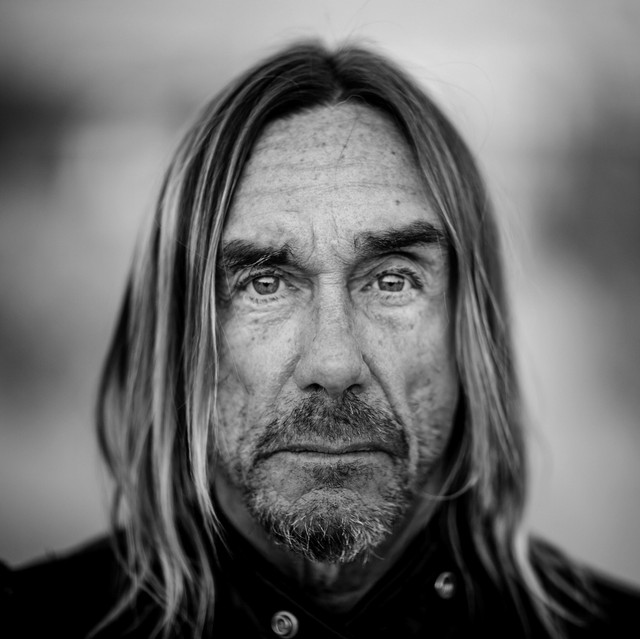 Photo Iggy Pop