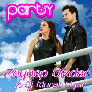 Party Albümü